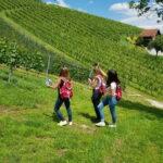 Wanderer in den Weinbergen mit Klapotetz